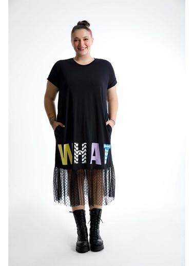 Luokk Noah Baskılı Yuvarlak Yaka Tül Detaylı Elbise Siyah Siyah